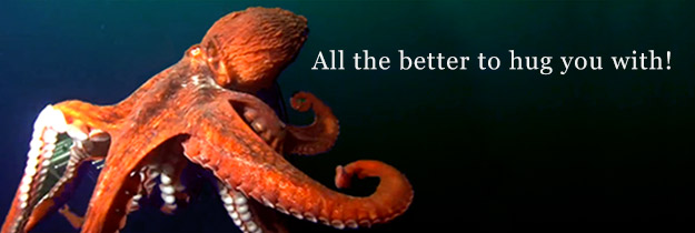 Giant Pacific Octopus-All the Better to Hug You