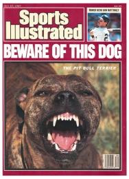 Pitt Bull Sport Illustrated