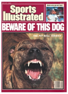 Pitt Bull Sport Illustrated