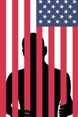 New Jim Crow-Flag as Bars
