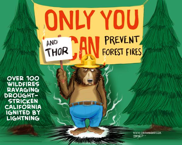 Antifragile bear-prevent-forest-fires-cartoon-390x220