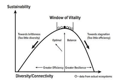 Antifragile Convexity