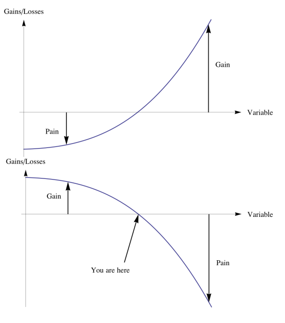 AntiFragile Graph